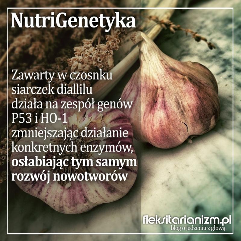 NutriGenetyka: Czosnek